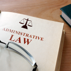 "What Qualifies as a ""Rule"" Under Texas Administrative Law?"